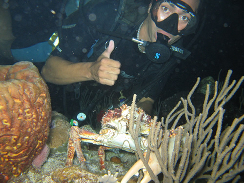Scuba Diving NYC - Night Diving Erwin List