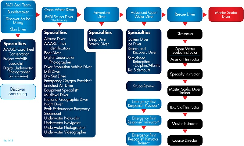 SCUBA DIVING NYC - COURSES CHART